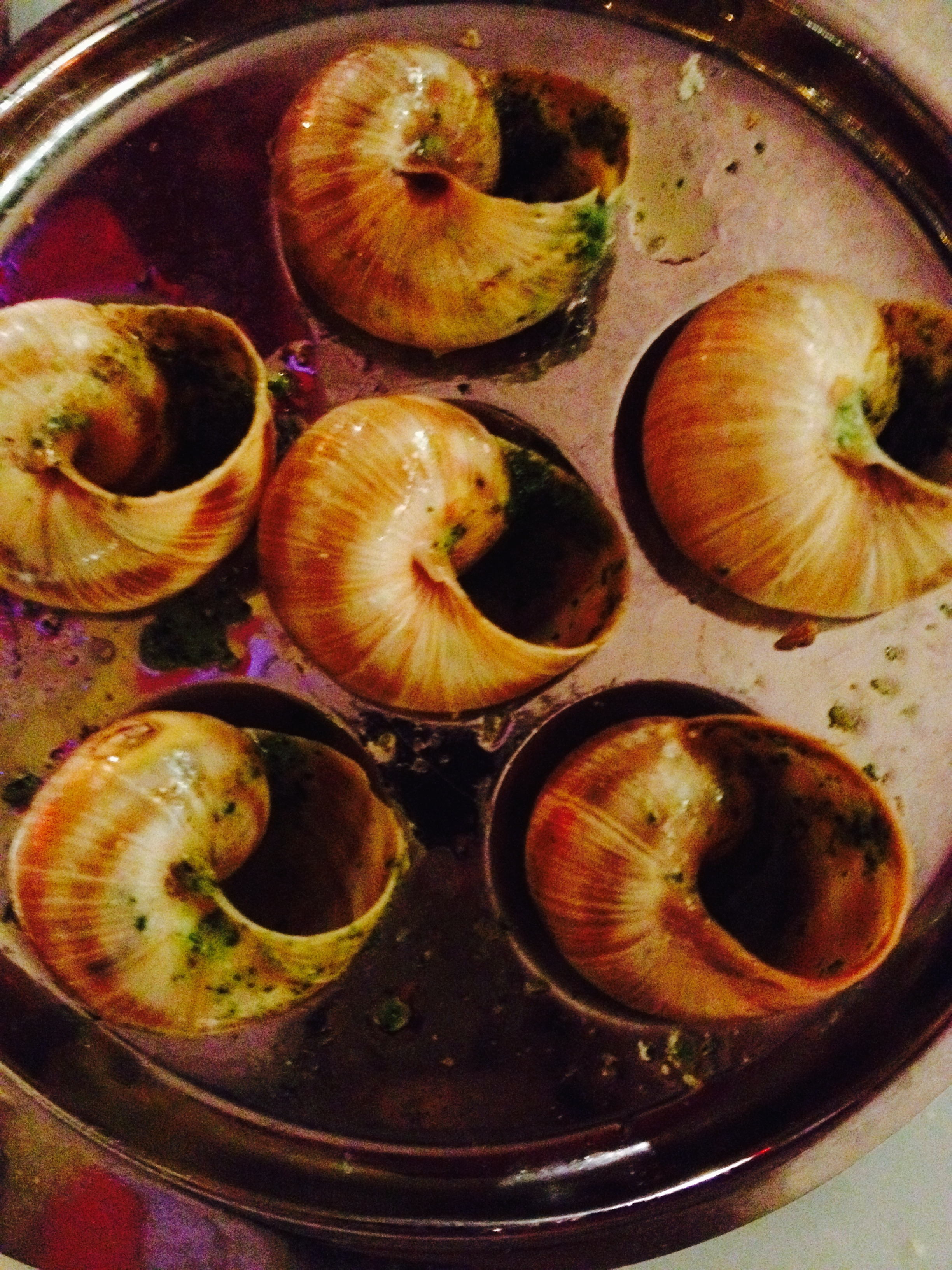 escargot... after we ate them :: radish*rose